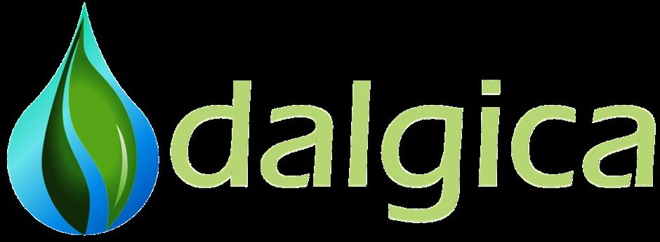Dalgica